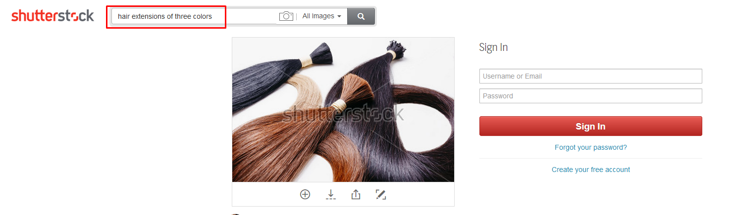 download shutterstock images