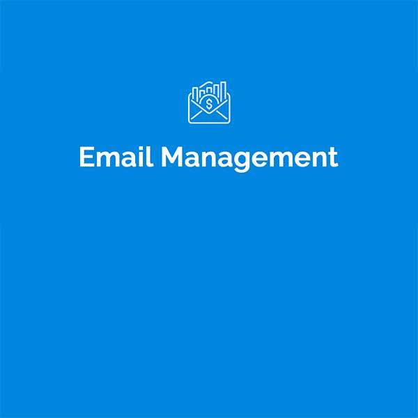 Niche Email Management
