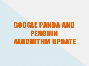 Google panda and penguin algorithm update.