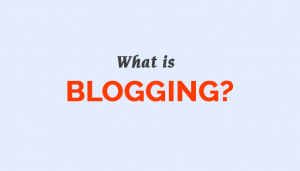 The wonderful world of blogging.